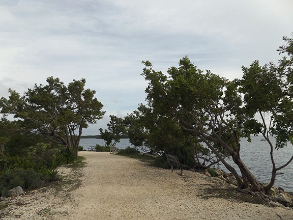 Biscayne-National-Park10