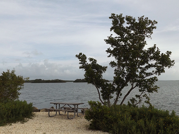 Biscayne-National-Park11