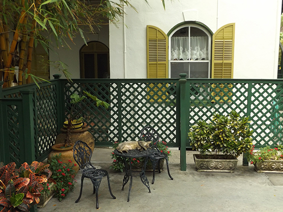 cat-in-courtyard-Ernest-Hemingway-House-Museum-Key-West