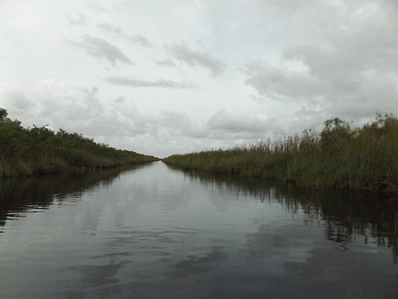 Coopertown-Air-Boat-Tours-Everglades14