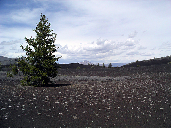 Craters-of-the-Moon-National-Monument6