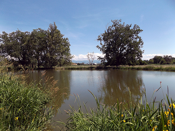 Whitman-Mission-National-Historic-Site-Walla-Walla2