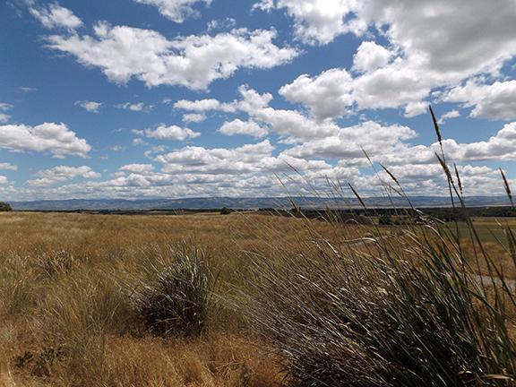 Whitman-Mission-National-Historic-Site-Walla-Walla4