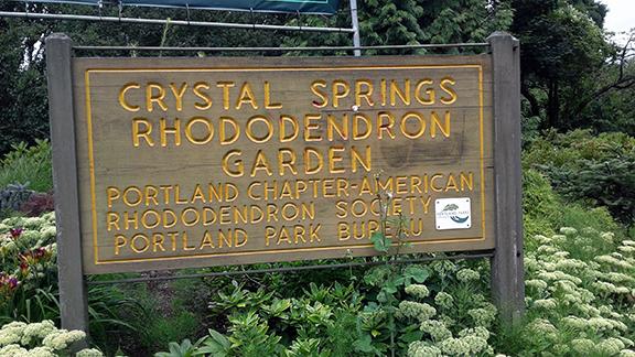 Crystal-Springs-Rhododendron-Garden-Portland