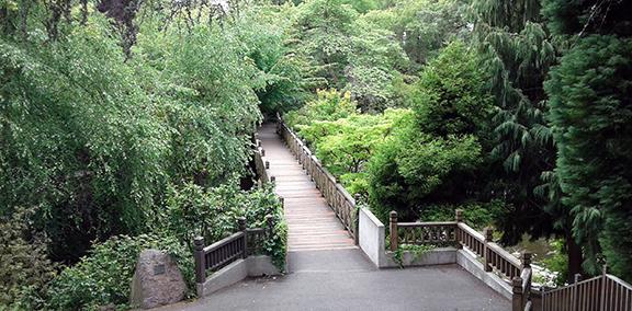Crystal-Springs-Rhododendron-Garden-Portland22