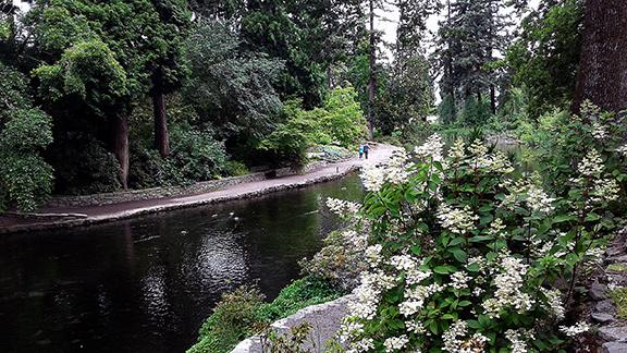 Crystal-Springs-Rhododendron-Garden-Portland5