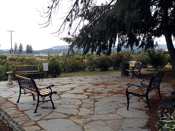 Heirloom-Roses-Saint-Paul-Oregon2