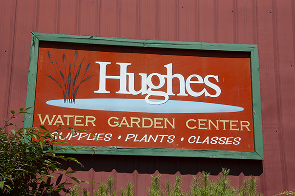 Hughes-Water-Gardens-Tualatin