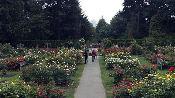 International-Rose-Test-Garden-Portland