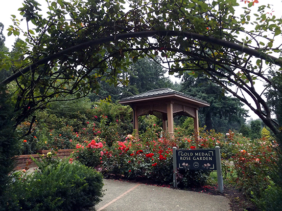 International-Rose-Test-Garden-Portland15.jpg
