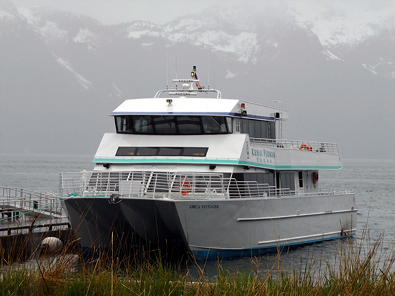 Kenai-Fjords-National-Park-boat-tour-Fox-Island5