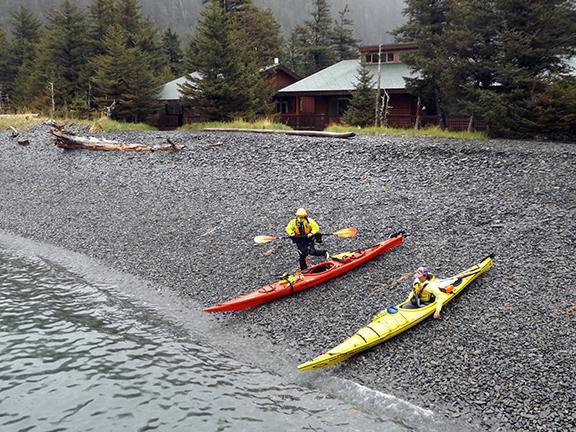 Kenai-Fjords-National-Park-boat-tour-Fox-Island9