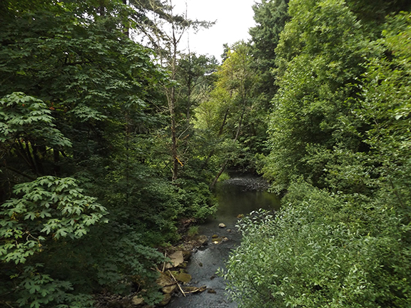 Leach-Botanical-Garden-Portland18