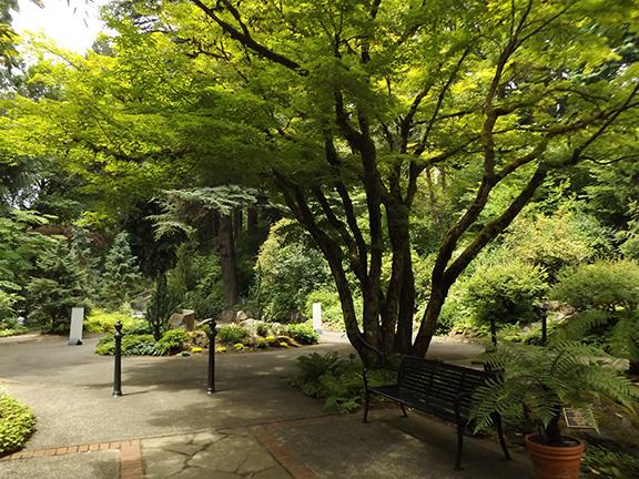 Leach-Botanical-Garden-Portland2