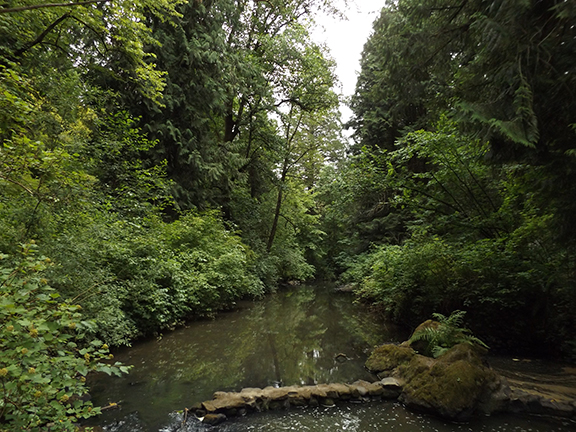 Leach-Botanical-Garden-Portland5