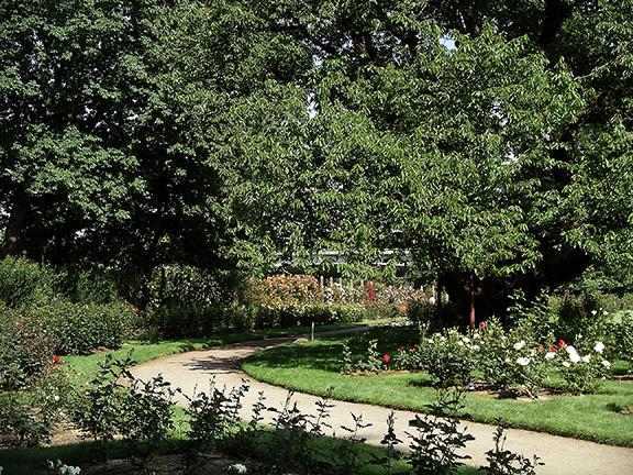 Owen-Rose-Garden-Eugene-Oregon5