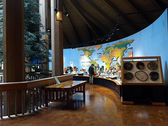World-Forestry-Center-Portland7