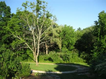 Acton-Arboretum-summer