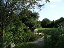 Acton-Arboretum-summer2