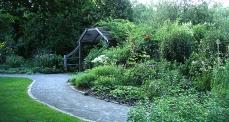 Acton-Arboretum-summer5