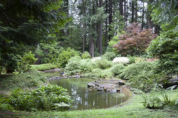 reflecting-pool-Peace-Garden-The-Grotto-Portland