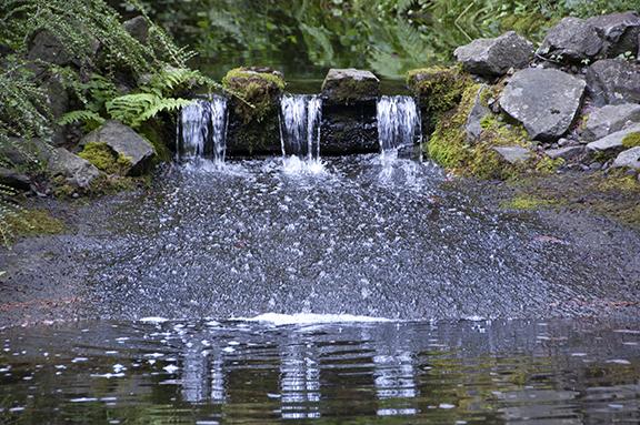 waterfalls-Peace-Garden-The-Grotto-Portland