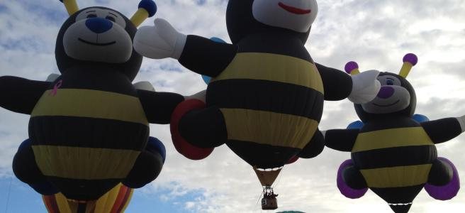 A picture of hot air balloons shaped like bees in flight at the Sequim Balloon Festival in Sequim, Washington